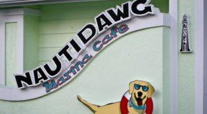 nauti dawg marine cafe tangylife