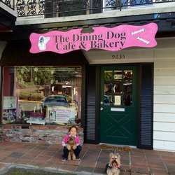the dining dog cafe tangylife