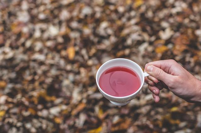 herbal=tea-benefits-tangylife-blog