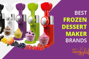 best frozen dessert maker review tangylife blog