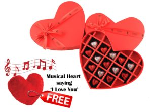 ZOROY Luxury Chocolate box gift valentines day tangylife